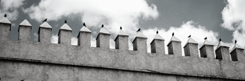 Nacionalismo e Direito Societário: um Oferecimento do COVID-19